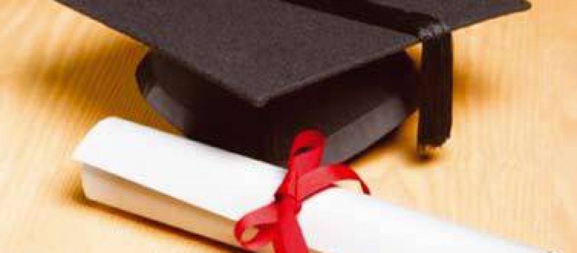 Projecto UPA forma jovens desempregados