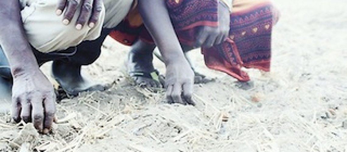 Agricultura contesta métodos externos de financiamento aos produtores em Nampula