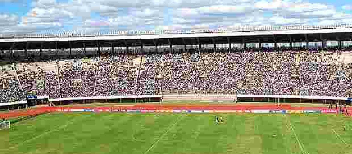Brasil vence Zimbábwe em treino para o Mundial