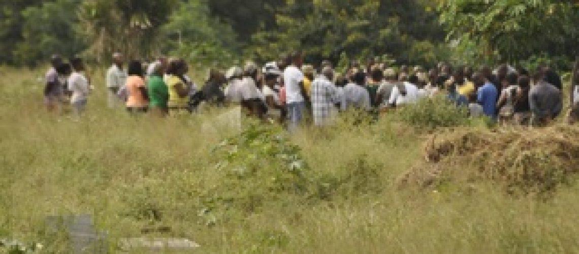 Cães arrastam restos de cadáveres para as casas no bairro Luís Cabral em Maputo