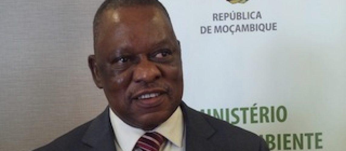Operadores do bravio no Grande Limpopo querem aeroporto internacional para potenciar  Turismo