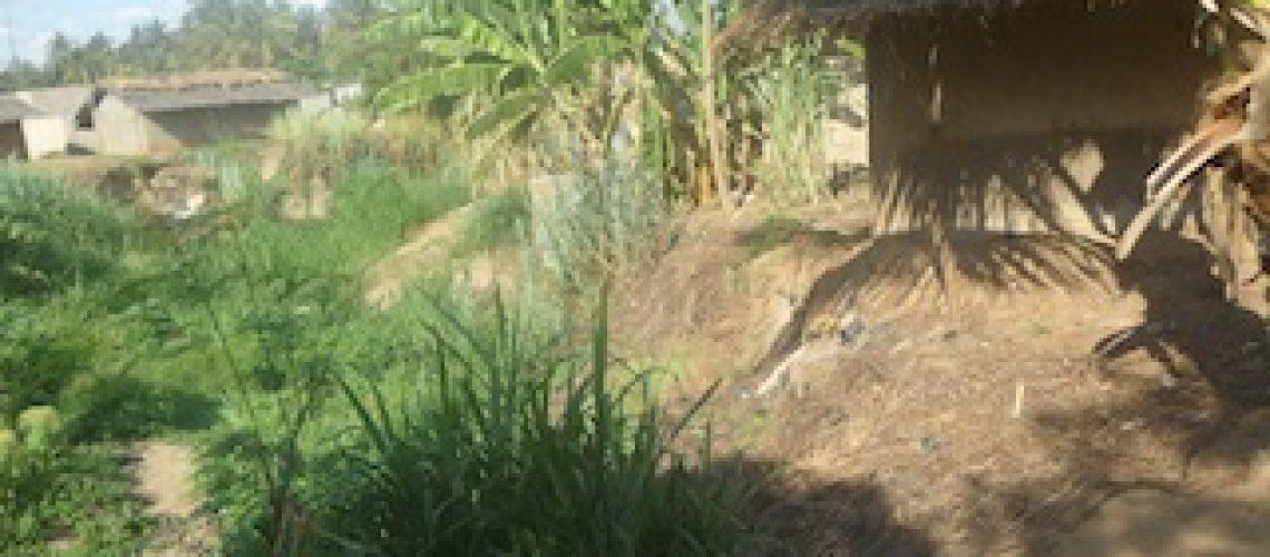 Governo de Filipe Nyusi não está a investir no saneamento e acesso a água para todos moçambicanos