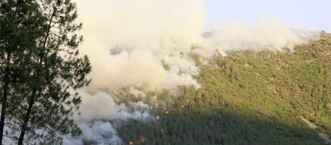 Europa luta contra os incêndios de verão