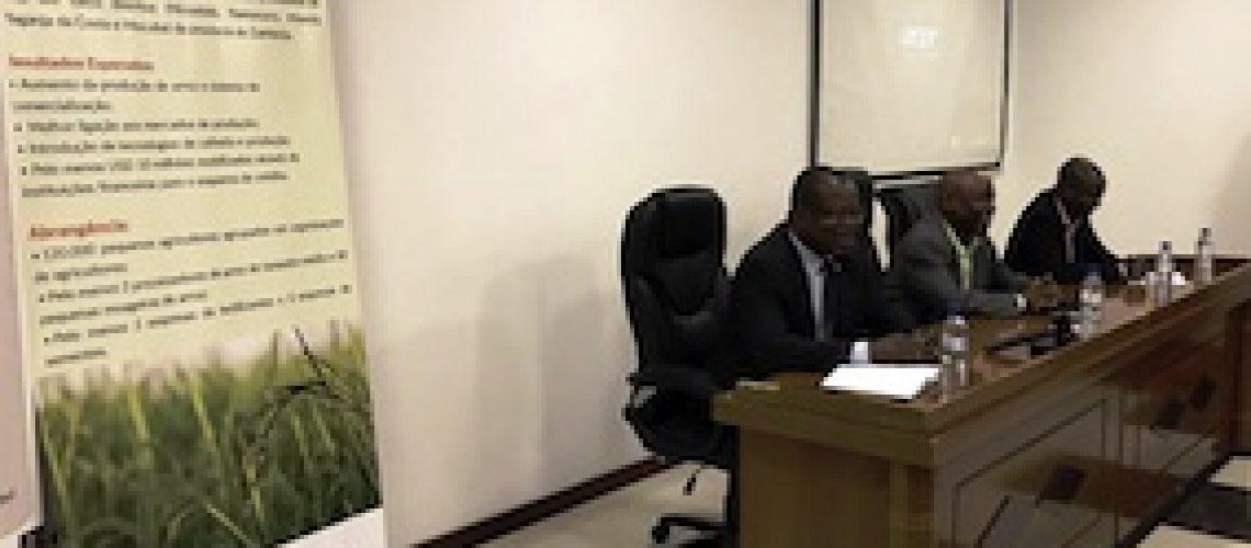 Na baixa Zambézia: AGRA e Gapi relançam cadeia de valor do arroz