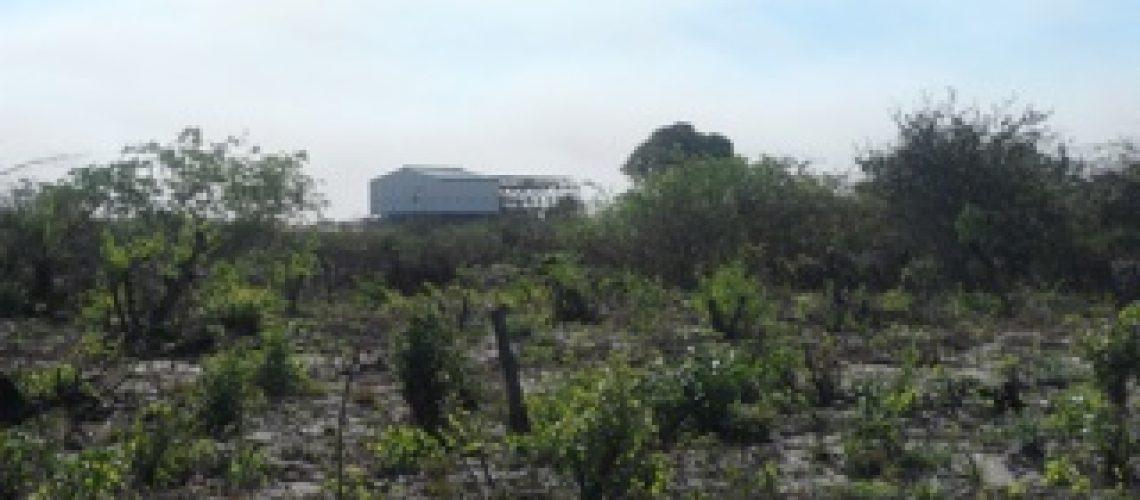 Sector extractivo continua sem impacto significativo nas receitas do Estado em Moçambique