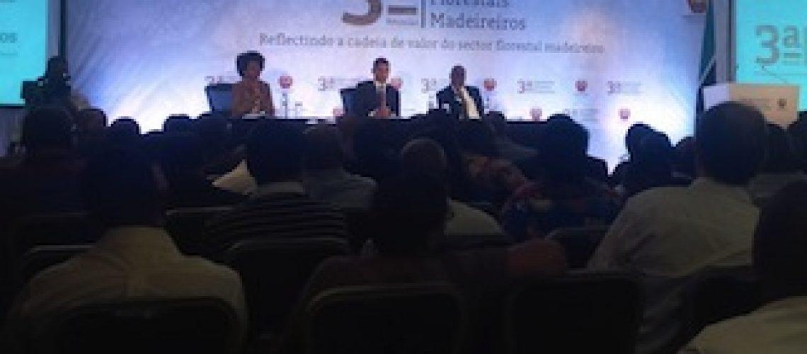 """Defeso especial no sector de madeiras é para """"salvar a floresta"""" no Centro e Norte de Moçambique"""