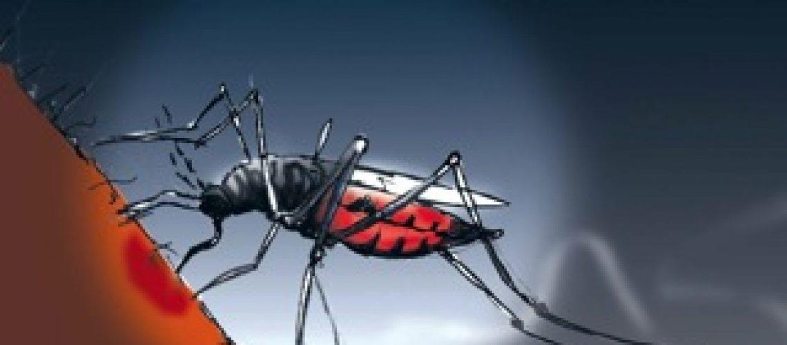"""A """"nossa"""" malária"""