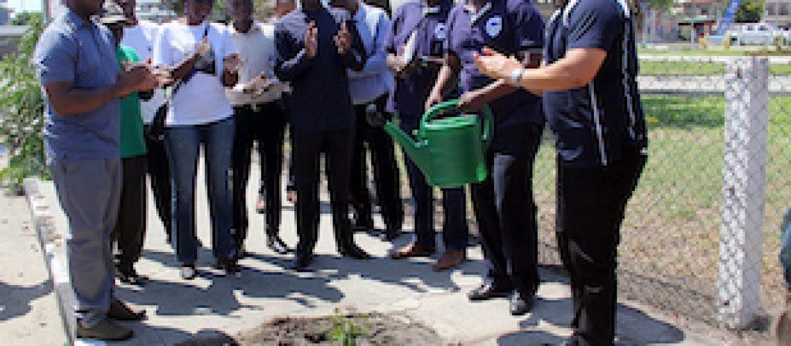 Com o plantio de 2.000 árvores: Standard Bank ajuda a repor áreas verdes da cidade da Beira