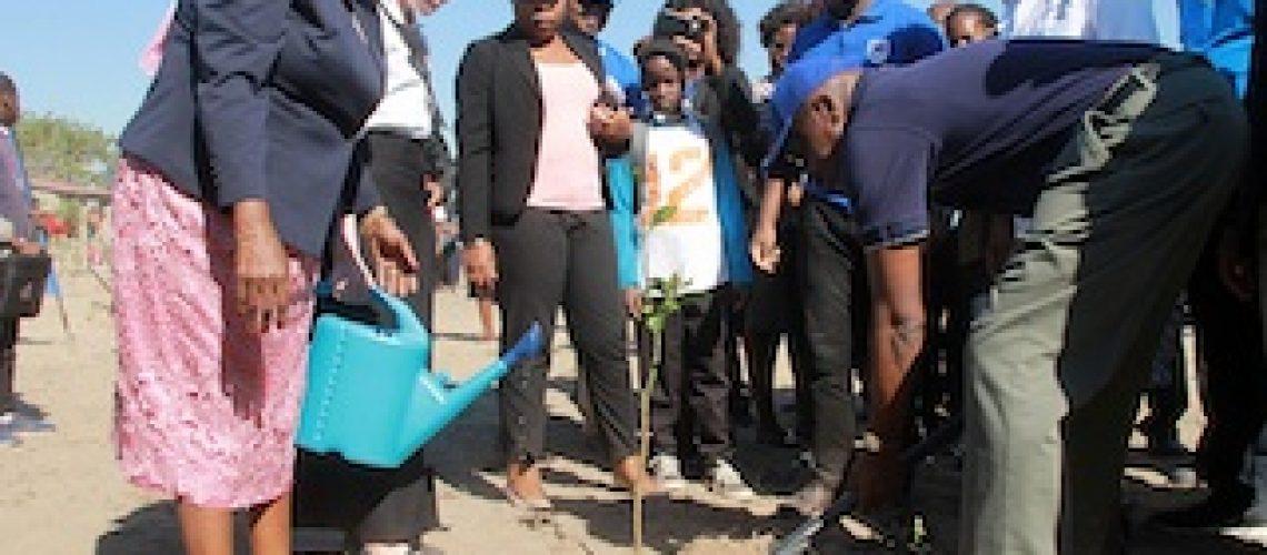 Plantio de mais de 3.000 árvores pelo Standard Bank: Conceita Sortane alerta sobre os comportamentos nocivos ao ambiente