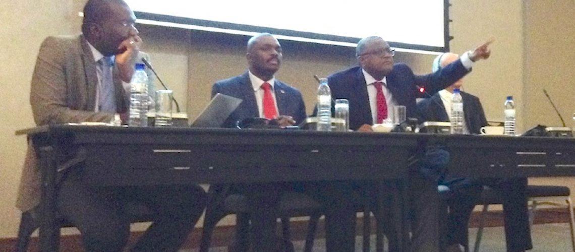 """Fundo Soberano de Moçambique """"poderá ser mais tarde"""" afirma PCA da ENH"""
